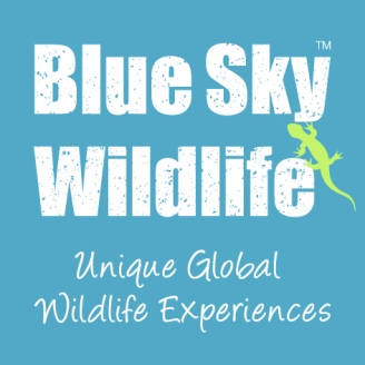 Blue Sky Wildlife_Logo_Square_CMYK_v6