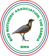 BIRD WATCHERS LOGO